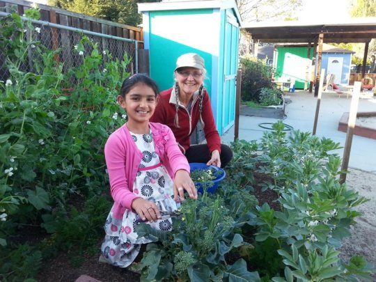 We teach about good nutrition by growing it onsite