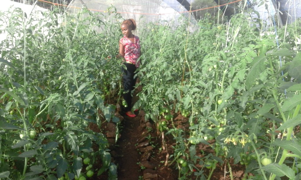 LITERACY FOR 100 GIRLS THROUGH GARDENING & SPORTS