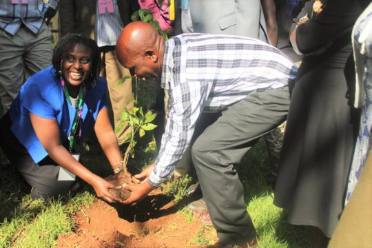 Team planting a tree to marka successful session