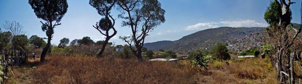 Panoramic SEcorner
