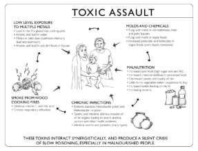 Toxic Assault