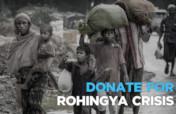 Addressing the Urgent Needs of the Rohingyas