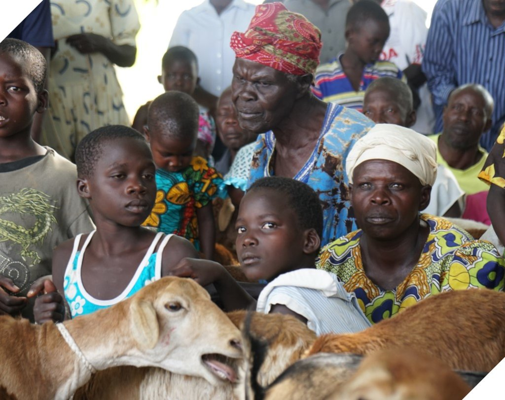 Give pregnant goat to widow or orphan in Uganda