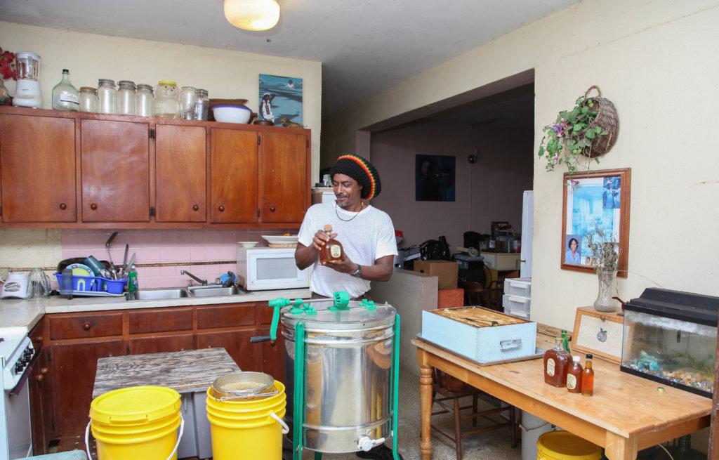Bring Back 5 Beekeepers to St John US Virgin Isle