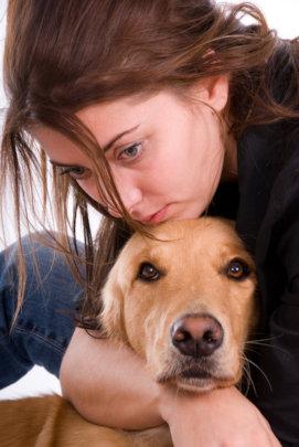 No Animals Left Behind - Help Them Escape Violence