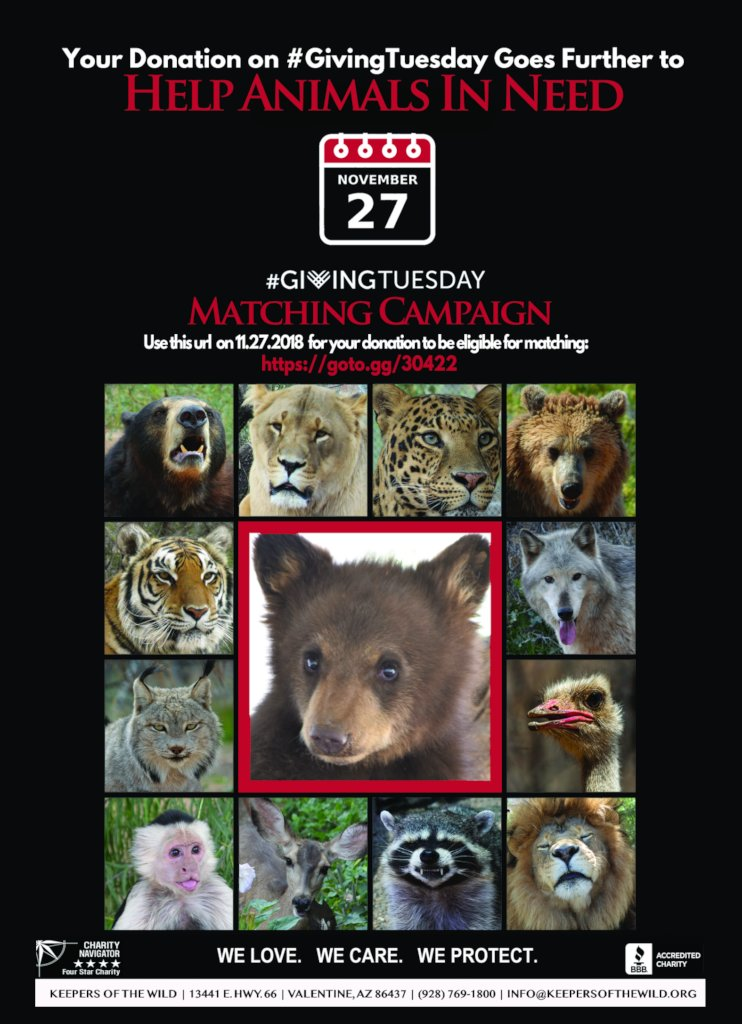 2018 #GivingTuesday Matching Campaign (11/27/18)