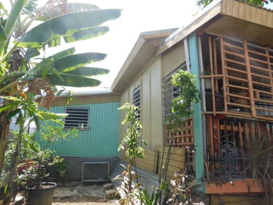 Edgardo's Roof, Viewed from His Garden