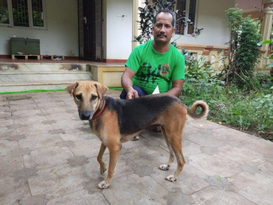Loca Finds Her Forever Home