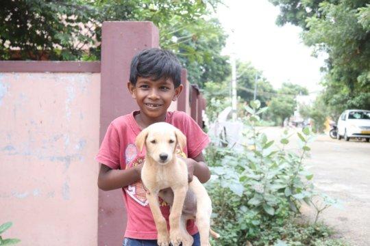 Kid bringing pet for Rabies Vaccination