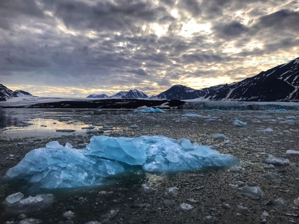 In a Fjord south of Svalbard,  by Safiria Buono