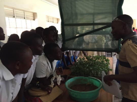 Students explaining low cost greenhouse