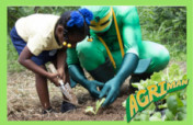 Educate Youth about Agriculture and Food Security