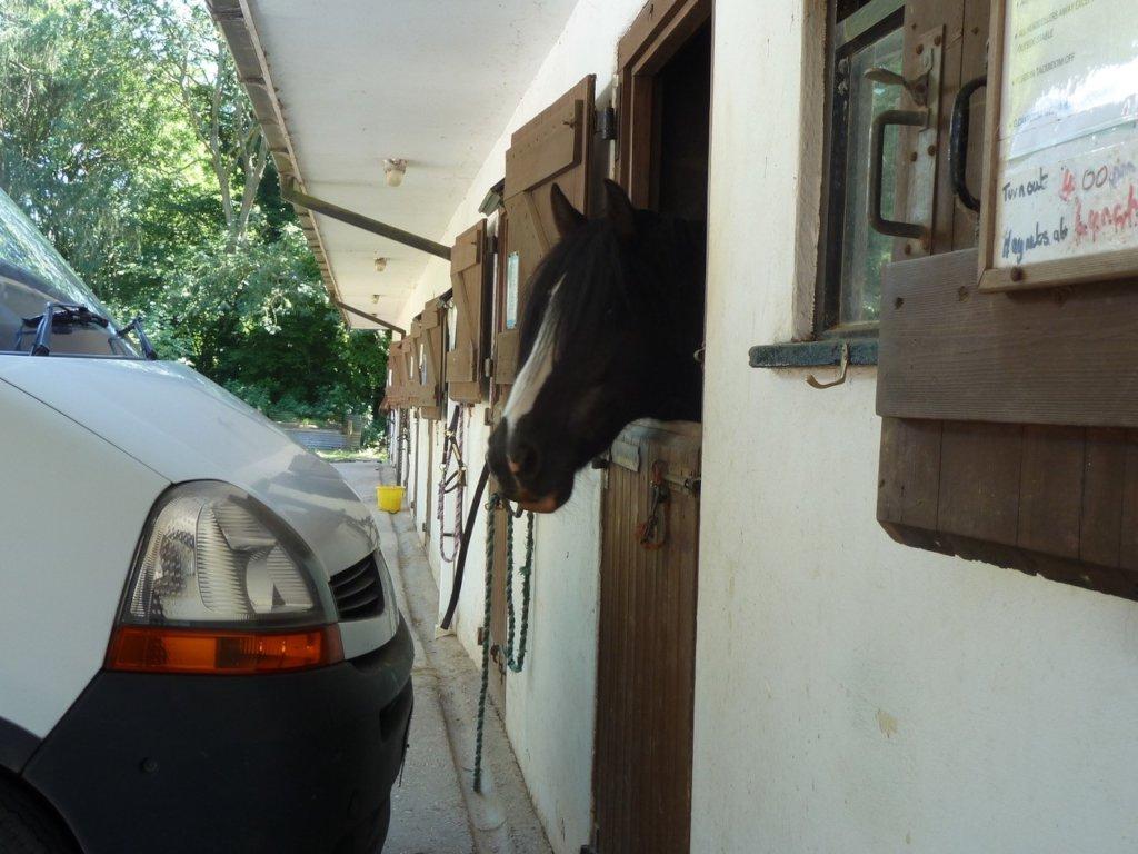 George and the van