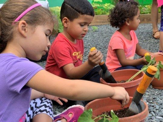 Children's agriculture workshop
