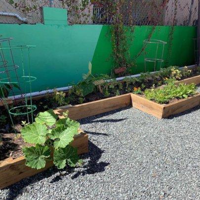 Nuestra Escuela's Urban Garden