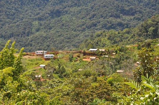 View of Ikundi with Health Center and forest