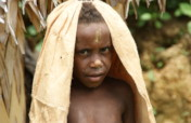 Protect forest & 100 families in Papua New Guinea