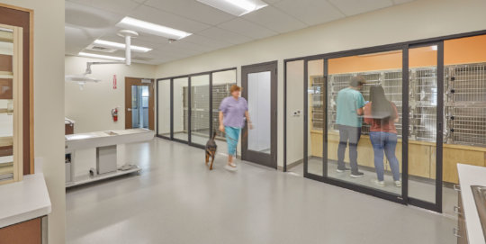 Veterinary Medical Hub