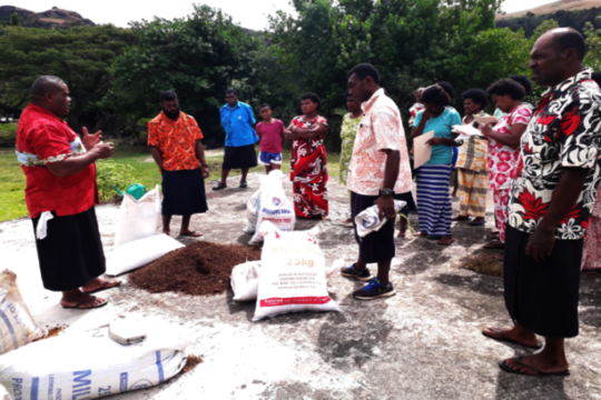 Villagers involved in the organic farming training