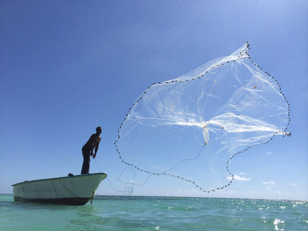 Transforming Local Fishermen Into Coral Gardeners
