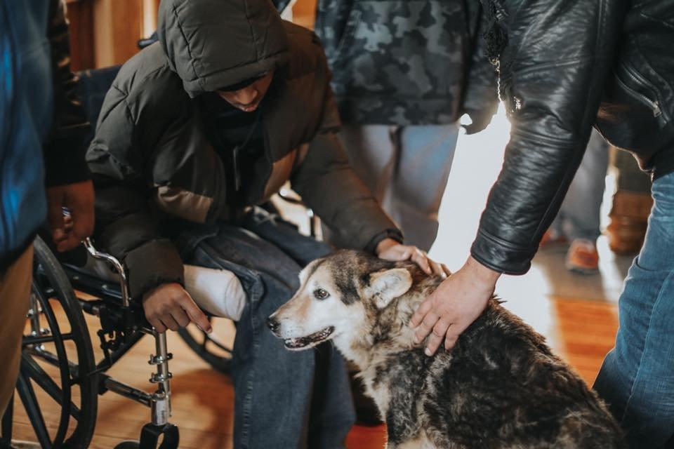 Stray Rescue's Ranch Hospice Program