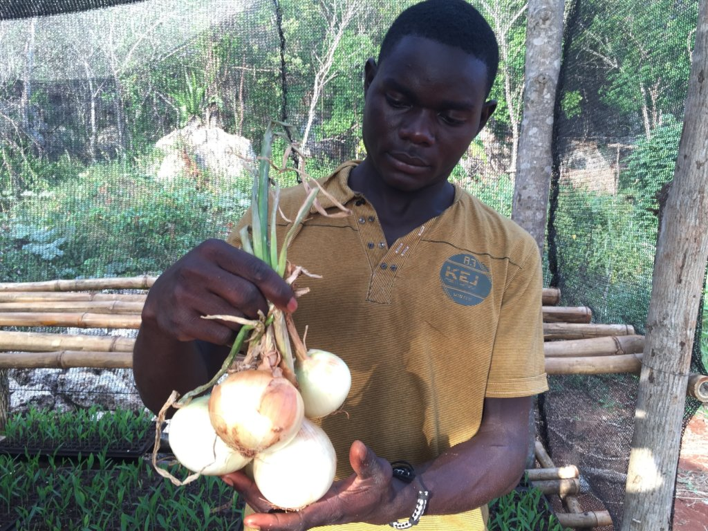 Plant Onions to Restore Farmer's Human Rights