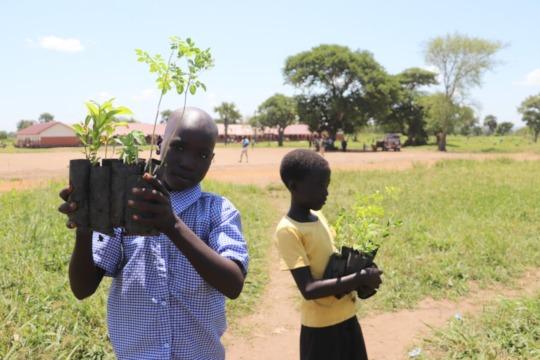 Kids in the camp receiving seedlings