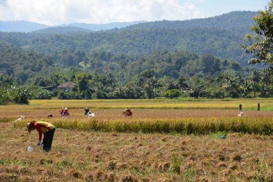 Khon Kaen, northern Thailand