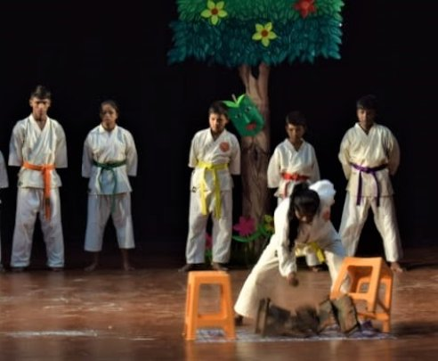 Karate and other feats are part of the annual show