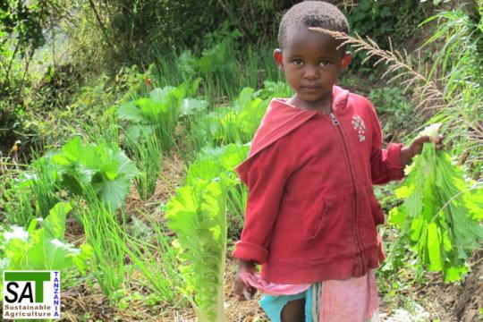 Organic Farming for SmallScale Farmers in Tanzania