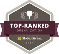 Ranked: top, effective, vetted and site visited (PDF)
