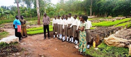 Students visit Tree planting nursery bed