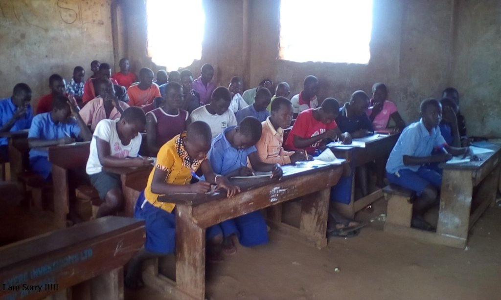 Providing children with examinations weekly