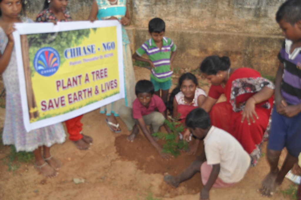 Help to plant 1000 trees in rural schools