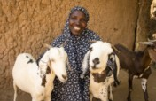 Herding for Sustainable Futures