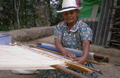 Support indigenous women's self-sufficiency in MX