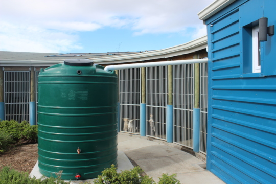 Our rainwater harvesting system
