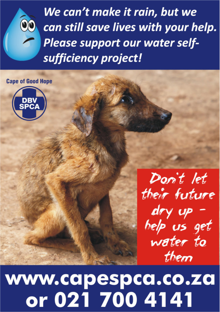 CAPE TOWN DROUGHT RELIEF FOR THOUSANDS OF ANIMALS