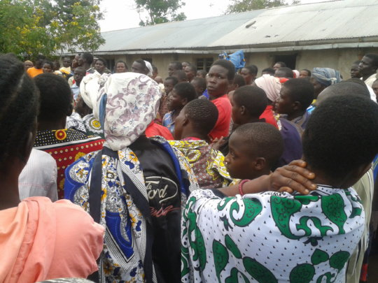 IMPROVED AGRICULTURAL PRACTICES FOR 80 KOLO WIDOWS