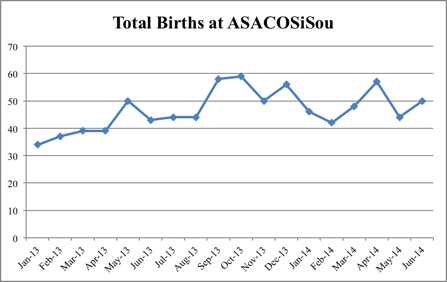Total Births at Clinic