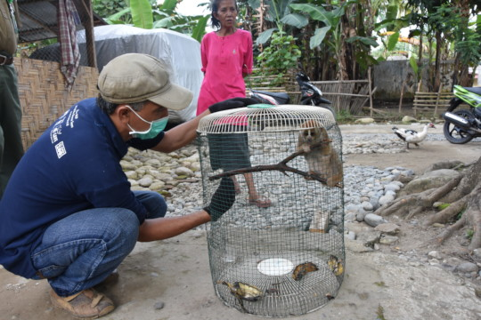 ISCP secured Slowloris from illegal keeping