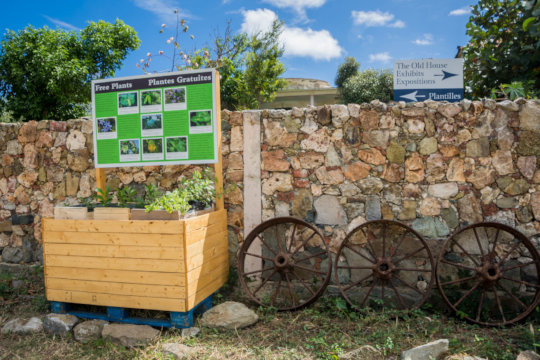 Free plant stand for wildlife-friendly backyards.
