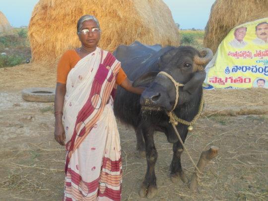 Empowerment of Widows through Micro-Enterprises