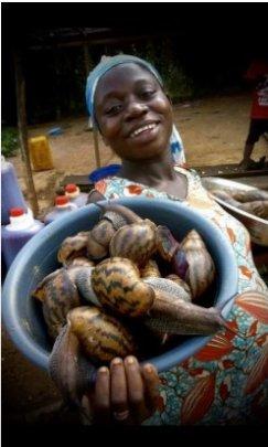 Women Economic Empowerment: Snail Farm in Ghana