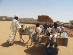 Women Save to Buy their Husbands Donkey Carts