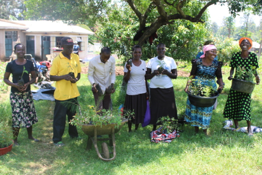 Beneficiaries receiving tree seedlings