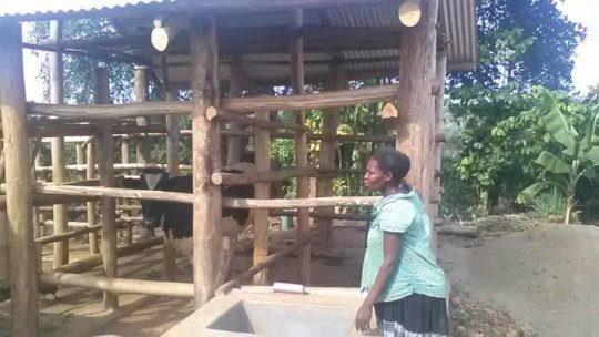 Increase Economic Opportunities for 200 Girls