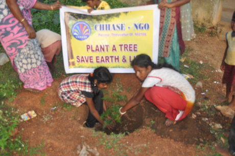 support to plant 1000 plants in rural schools
