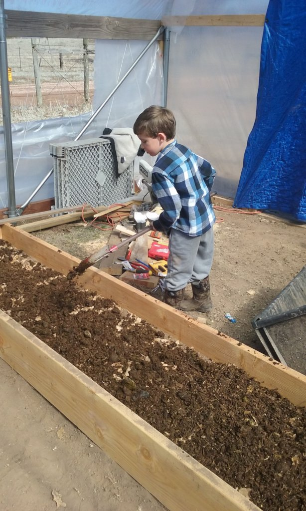 Farming with kids and critters