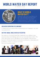 World Water Day Report (PDF)